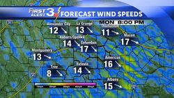 Local 48 HR FORECAST Wind Speed (Copy)
