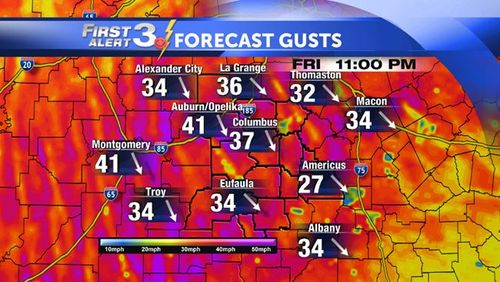 Local 36 HR FORECAST Gusts (Copy)